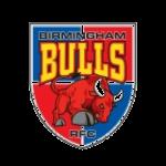 bbulls_logo